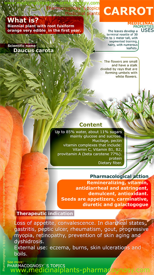 Carrot benefits. Infographic
