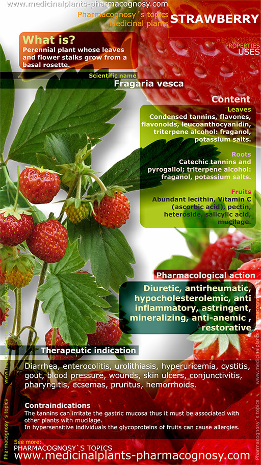Strawberry benefits. Infographic