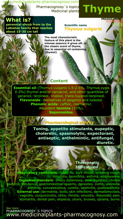 Thyme benefits infographic