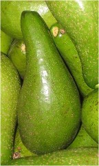 Avocado properties