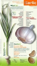 garlic properties