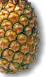 Pineapple - Medicinal plants