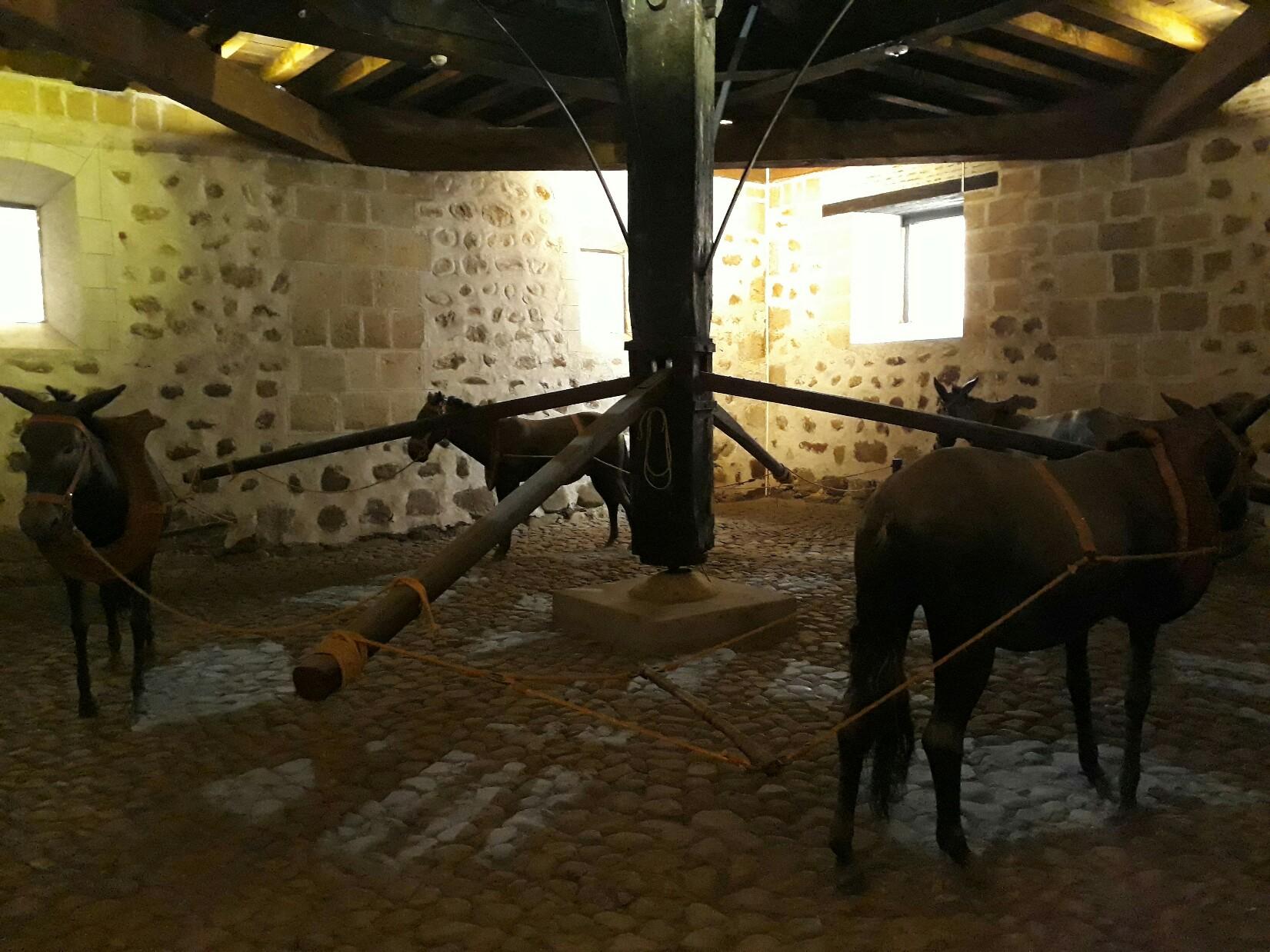 Les mulets faisant fonctionner la machine pour presser les lingots