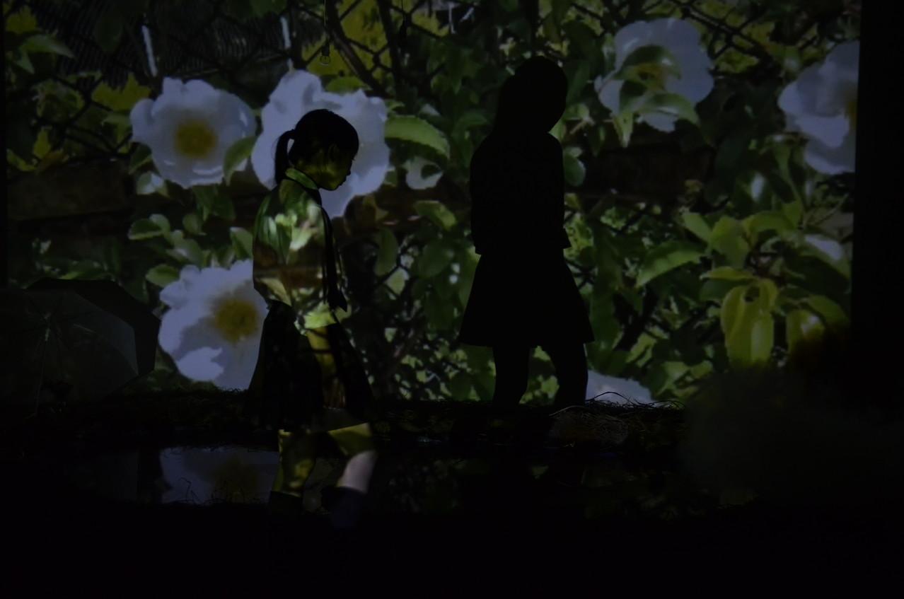 記憶のアポトーシス(2013)