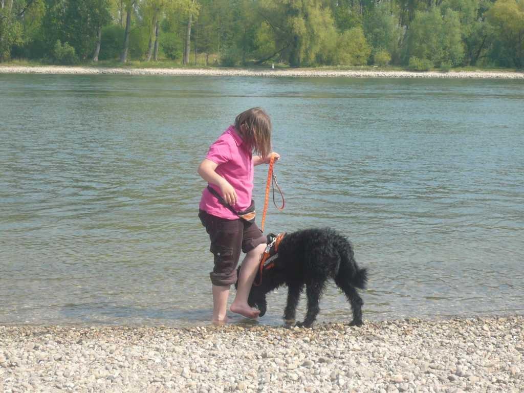 ... am Rhein Charlie ins Wasser locken