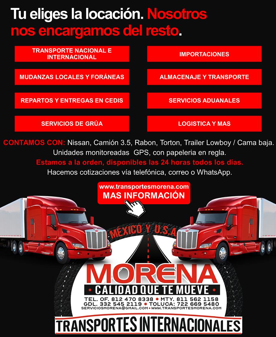 SERVICIO DE TRANSPORTE NACIONAL E INTERNACIONAL EN MEXICO