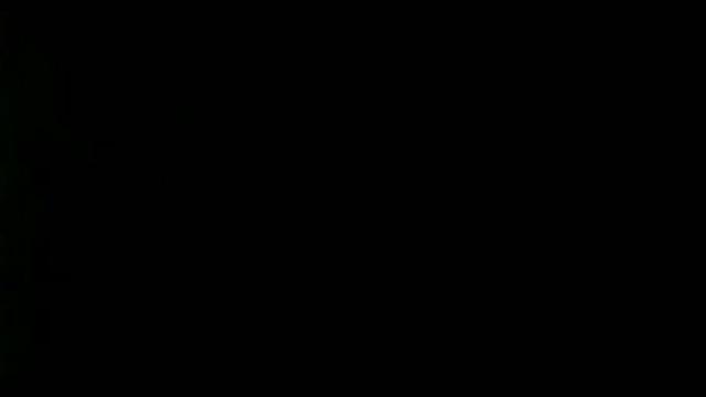 Кане корсо: описание породы, характеристика, стандарт