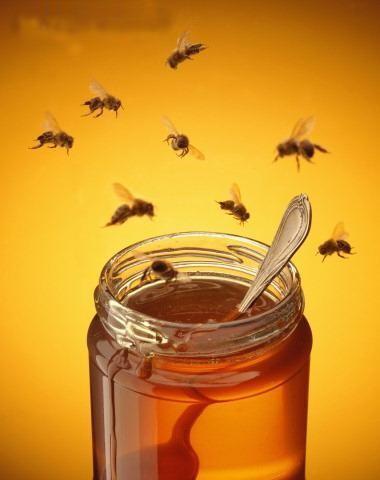 miels de fleurs