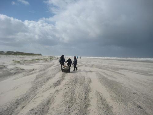 Nationalparkwacht Müll Strand