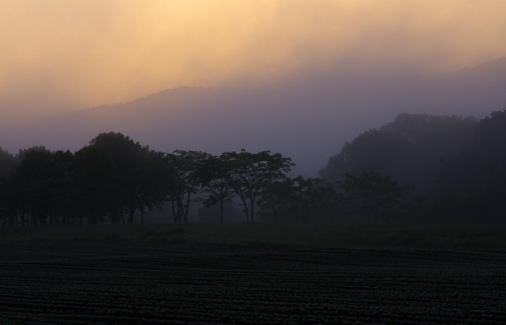 6/16 新冠町新栄 霧の朝焼け