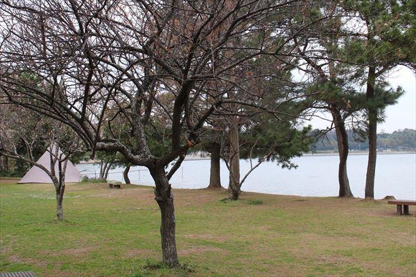 親沢公園キャンプ場