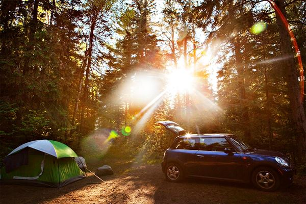 NESTA NATURE CAMP FIELD ネスタ・ネイチャー・キャンプフィールド
