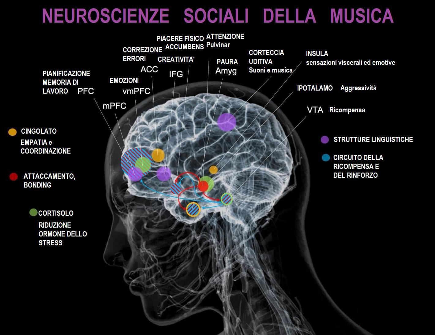 NEUROSCIENZE SOCIALI DELLA MUSICA!