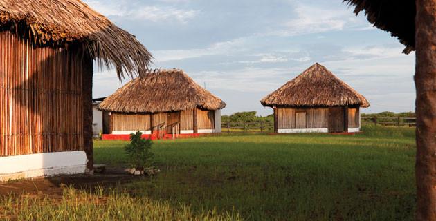 El Madresal, ecoturismo Chiapas