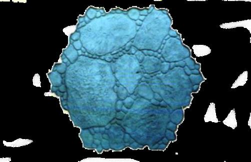 molde piedra rio