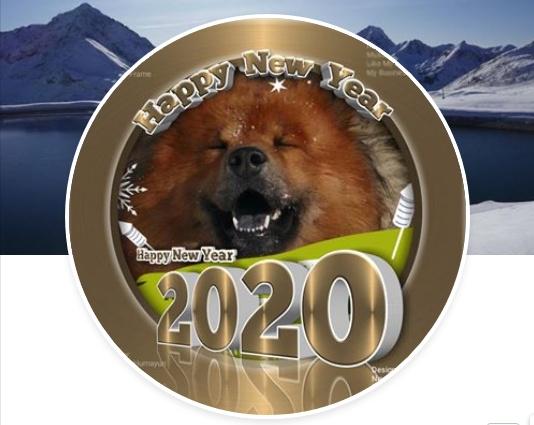 Avito wünscht alles Gute im Neuen Jahr 2020!