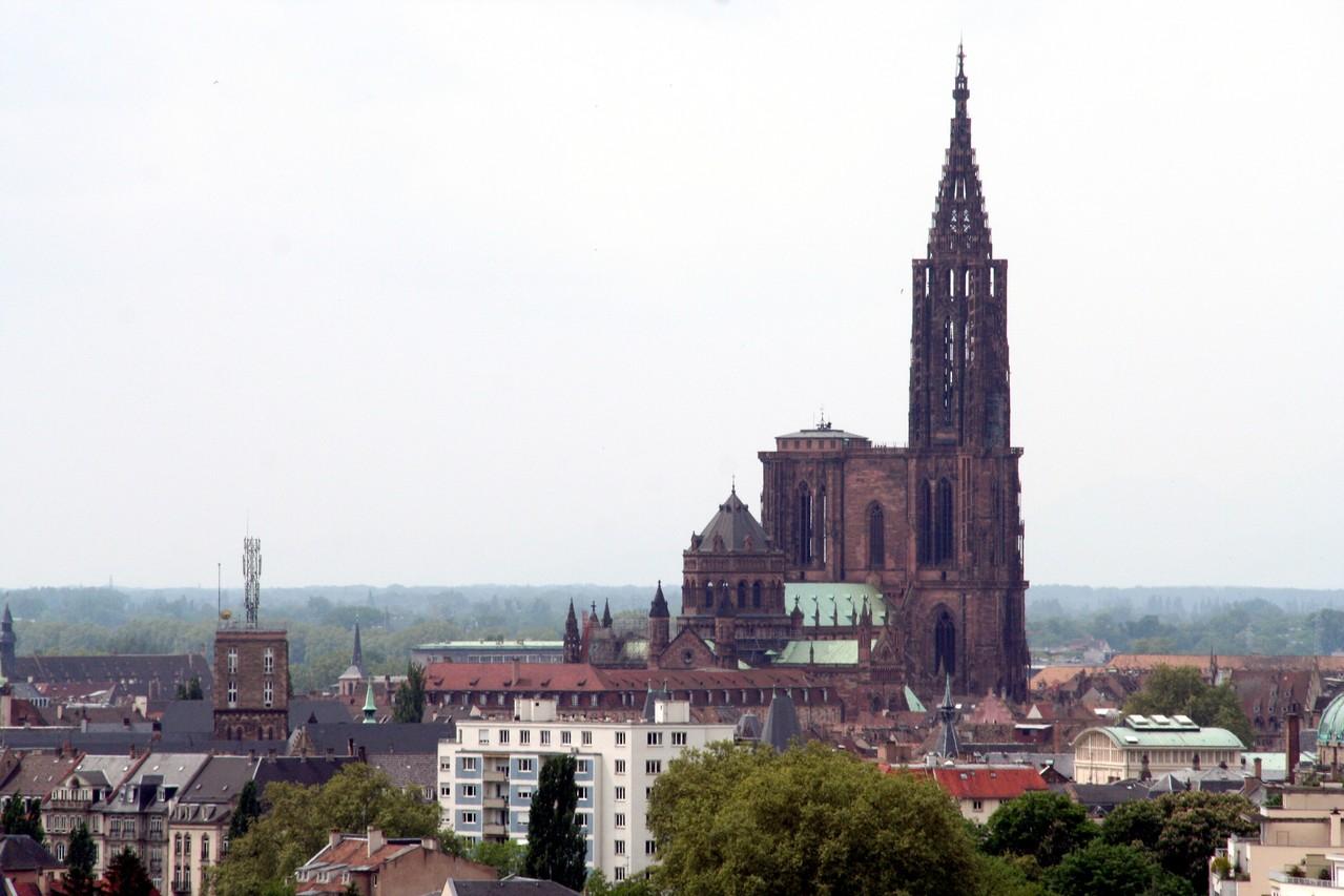 Blick vom Dach des Parlamentes aufs Münster