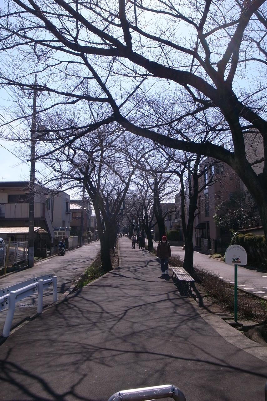 花と緑の散歩道 220m(徒歩3分)
