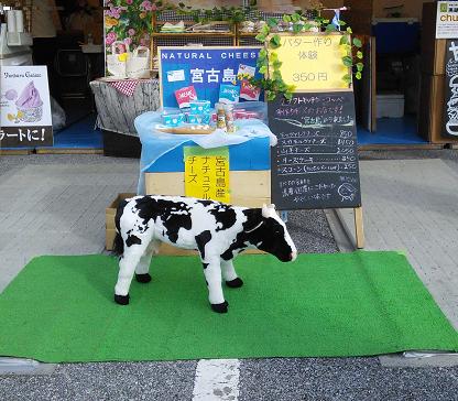 おきなわ花と食のフェスティバル2018宮古島チーズ工房ブース