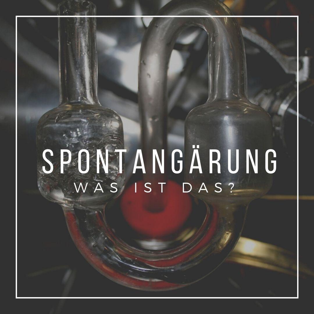 Spontangärung - Was ist das?