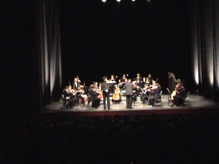 Vienna Symphony Orchestra directed by Thomas Rösner