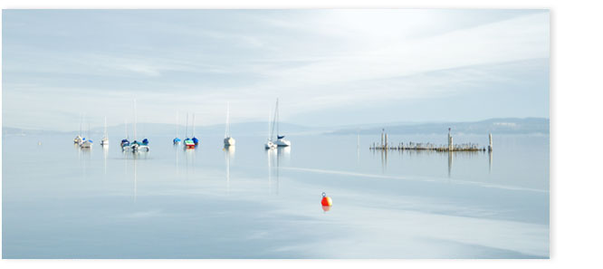 Segelboote vor der Insel Ufenau am Morgen