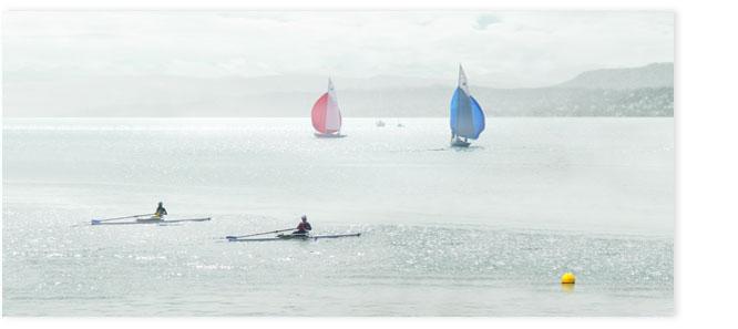 Ruderboote auf dem Zürichsee