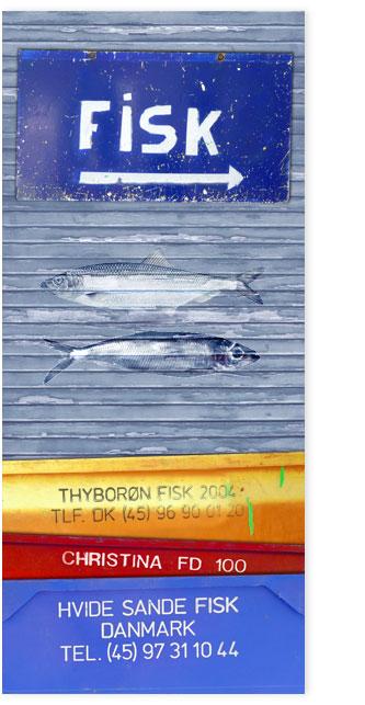 Fisk 001, Fischfangwannen