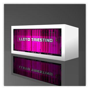 Leuchtkästen als Containerleuchte. Hier mit Motiv Lloyd Triestino 001
