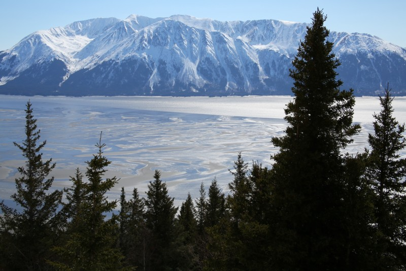 Ausblick vom Birdridge Trail in den Chugach Mountains auf den Turnagain Arm des Cook Inlet