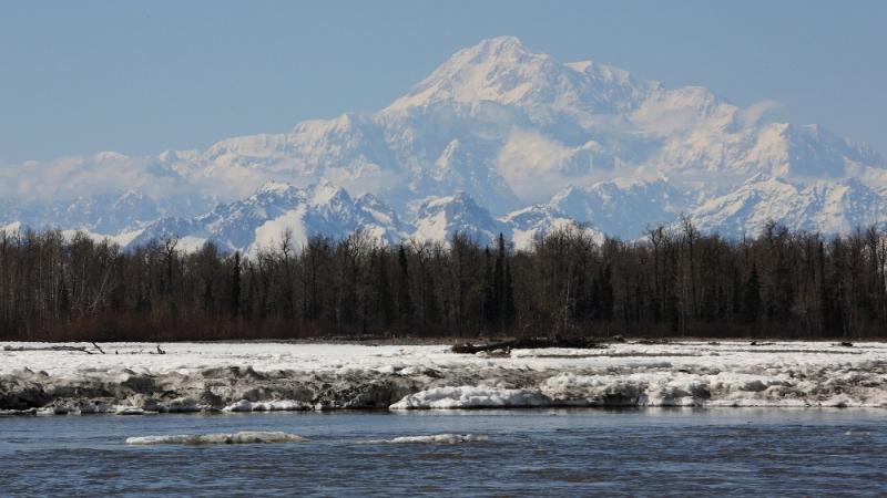 Der Susitna-River in Talkeetna mit Hochwasser nach der Schneeschmelze | am Mt. McKinley ganz links im Profil die West Rib