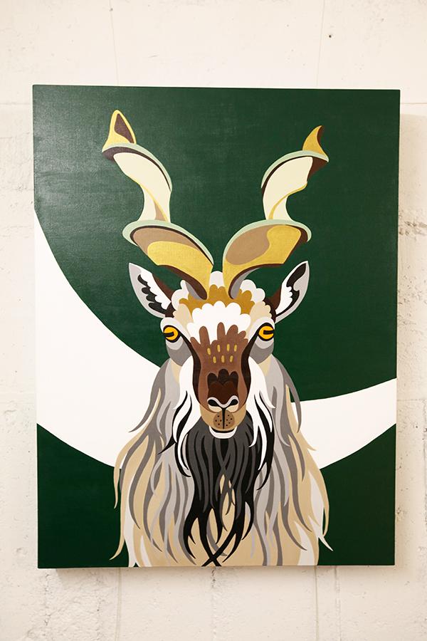 Pakistan : Markhor  (606×803)