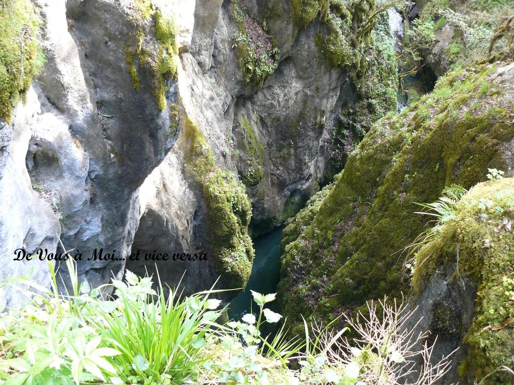 Des rochers sculptés par l'eau (Gorges de l'Abîme)