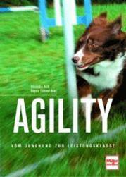 Agility vom Junghund bis zur Leistungsklasse