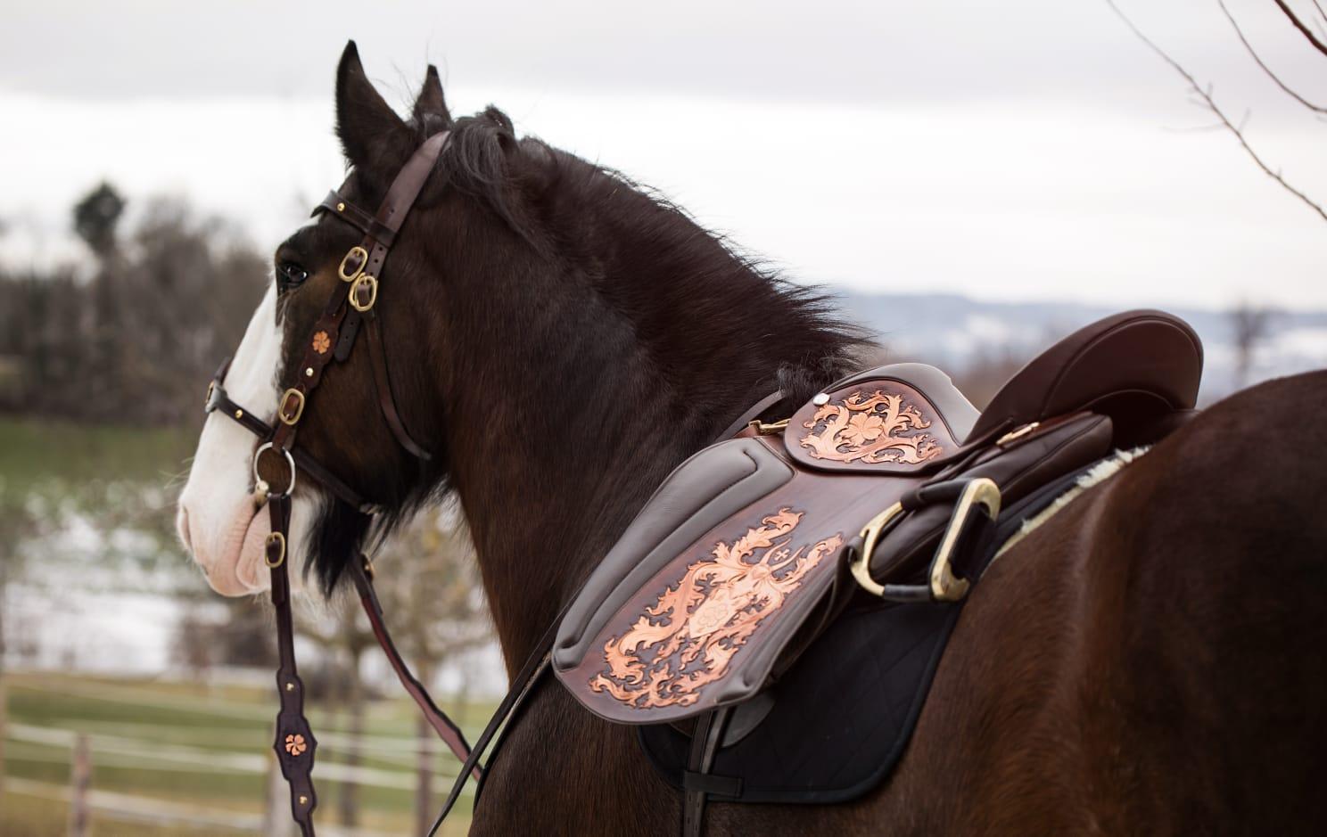 """Shire """"Primeli"""" mit seinem Cordobaschmuckstück punziert von War Horse"""
