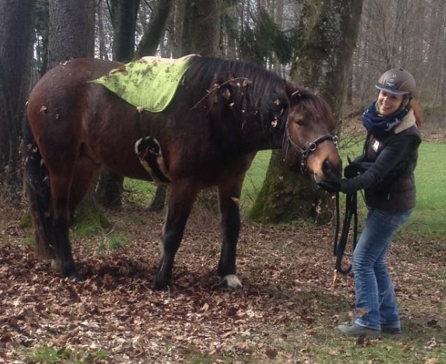 Eloy und Flavia mit dem Filzsattel in kiwigrün