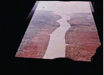 Resultat einer der ersten Sprayeinsätze. Januar 1962 auf der Halbinsel Ca Mau im Mekong-Delta. (Foto U.S. Army).