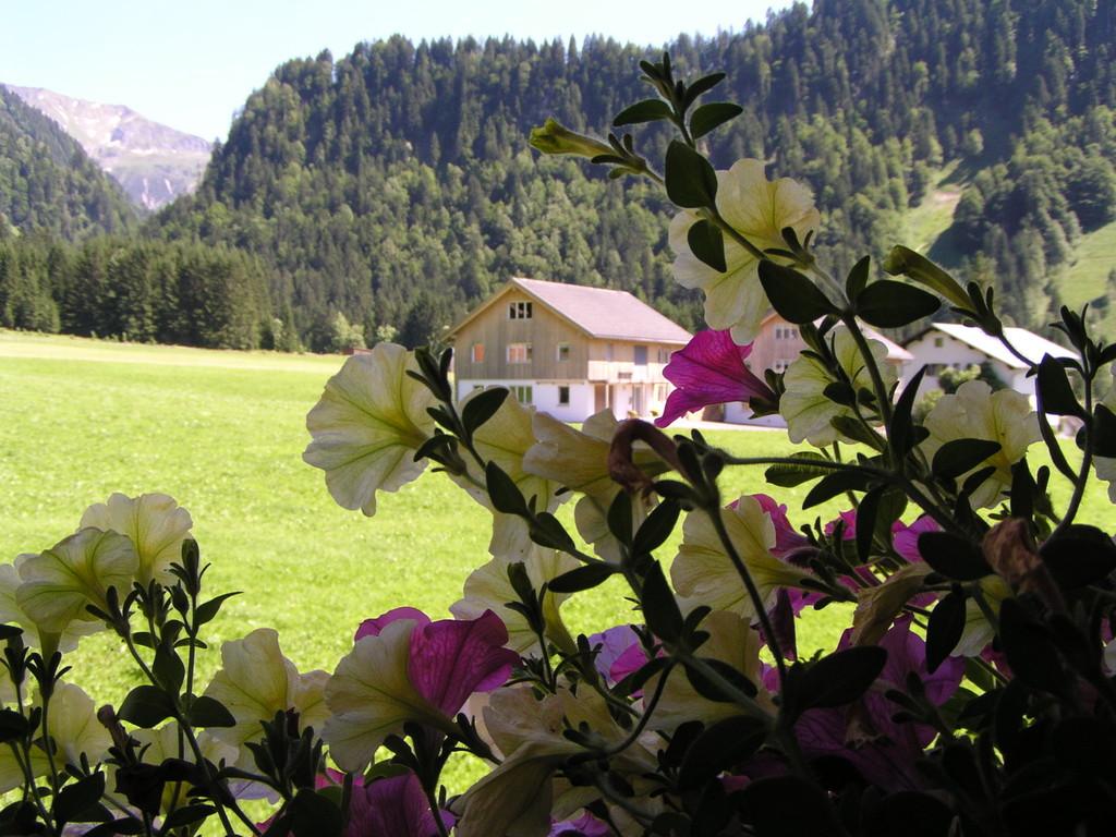 Ausblicke von Ihrem Zuhause im Bregenzerwald.