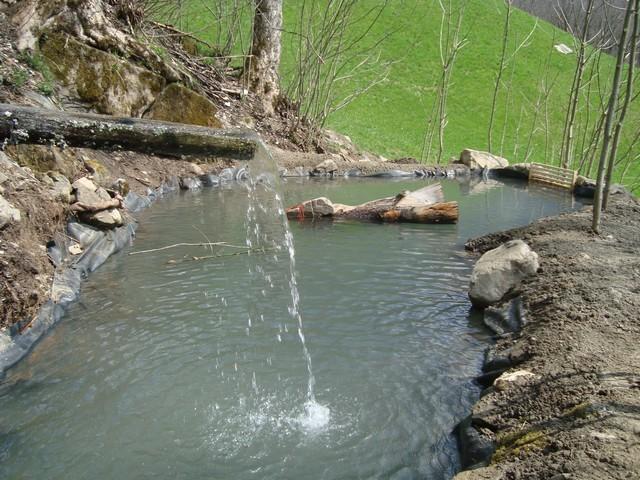 Wasser. Bäche und die Bregenzer Ache als Erholungsräume.