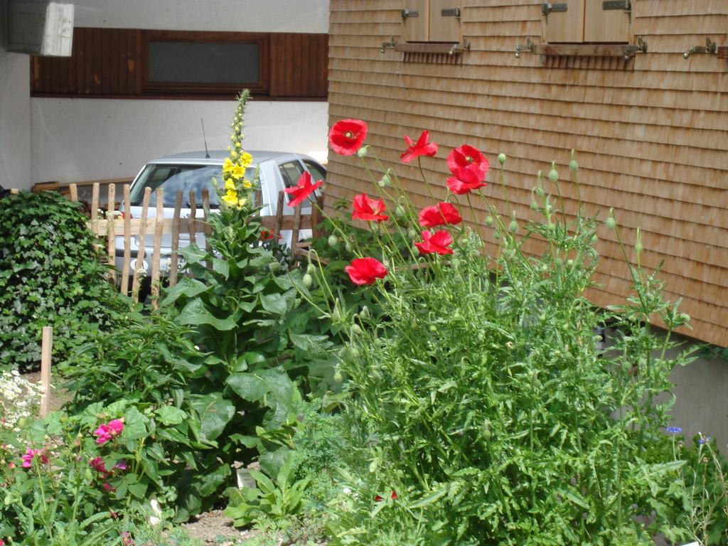 Ein vielfältiger, gepflegter Kräutergarten für Sie.