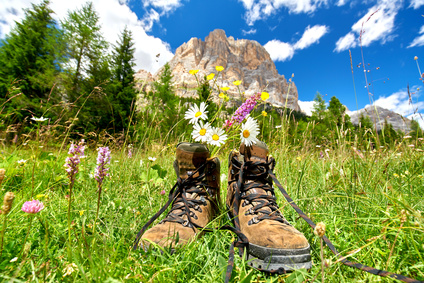 Erholung, Balance, Wandern, Natur, blumen, Wanderschuhe, Stress, entspannen, Burnout, vital, blauer Himmel, Blog, Autor, Thomas Eibl