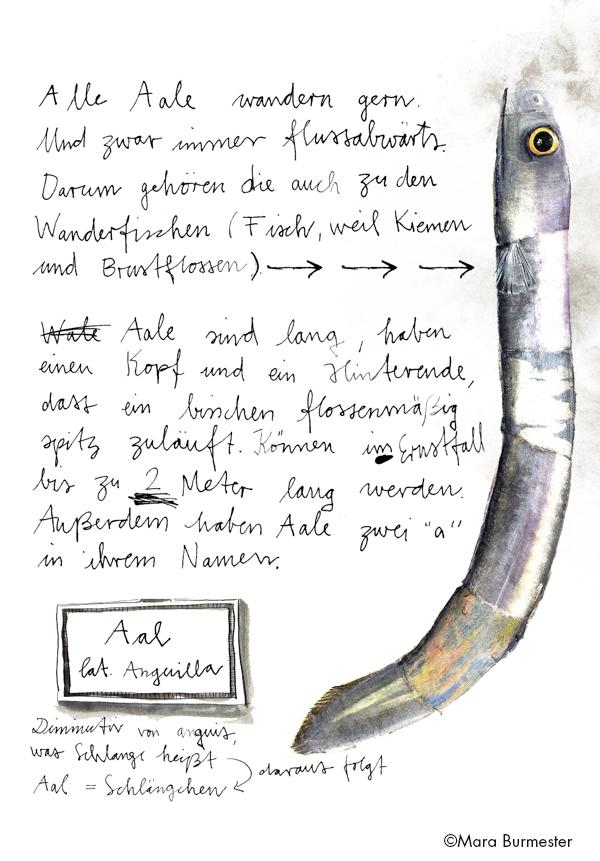 """""""Aal, der"""", Ausschnitt aus dem Buch """"Enzükloppedi""""(freies Projekt, nicht veröffentlicht), Acryl auf Papiercollage"""