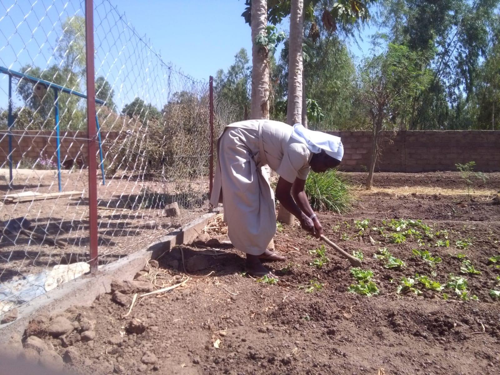 Die Schwestern leben als Selbstversorgerinnen und kümmern sich selbst um die Landwirtschaft.