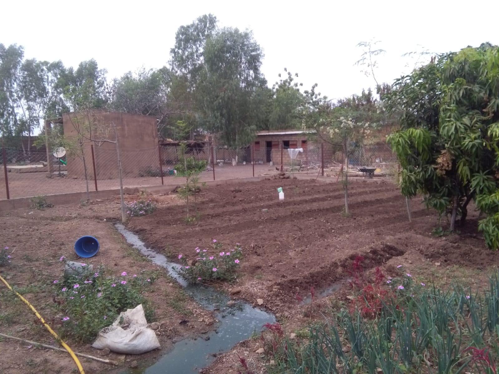Der Garten musste eingezäumt werden, da die freilaufenden Tiere die ganze Ernte zerstörten. Auch dies konnte unser Verein finanzieren.