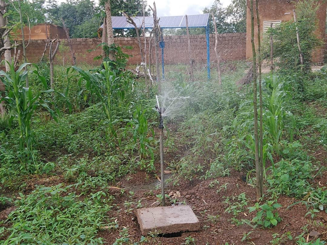 Auch das Bewässerungssystem für den Garten funktioniert mit Solarenergie. Das dafür notwendige Wasser liefert der neue Brunnen. Das gebrauchte Wasser der Fischzucht wird ebenfalls für den Garten verwendet.