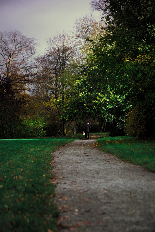 Herbst im Schlosspark Pansevitz..