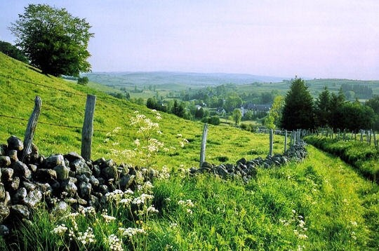 Autre paysage d'Aubrac en Aveyron - Gite La Garde - Gagnac 12310