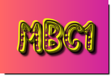 mbc1 live