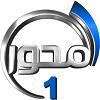 قناة المحور بث مباشر