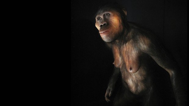 In Kenia erforscht die Familie Leakey seit Generationen den Stammbaum der Menschheit.- VIELLEICHT SOLLTEN SIE MAl IN DRESDEN FORSCHEN?